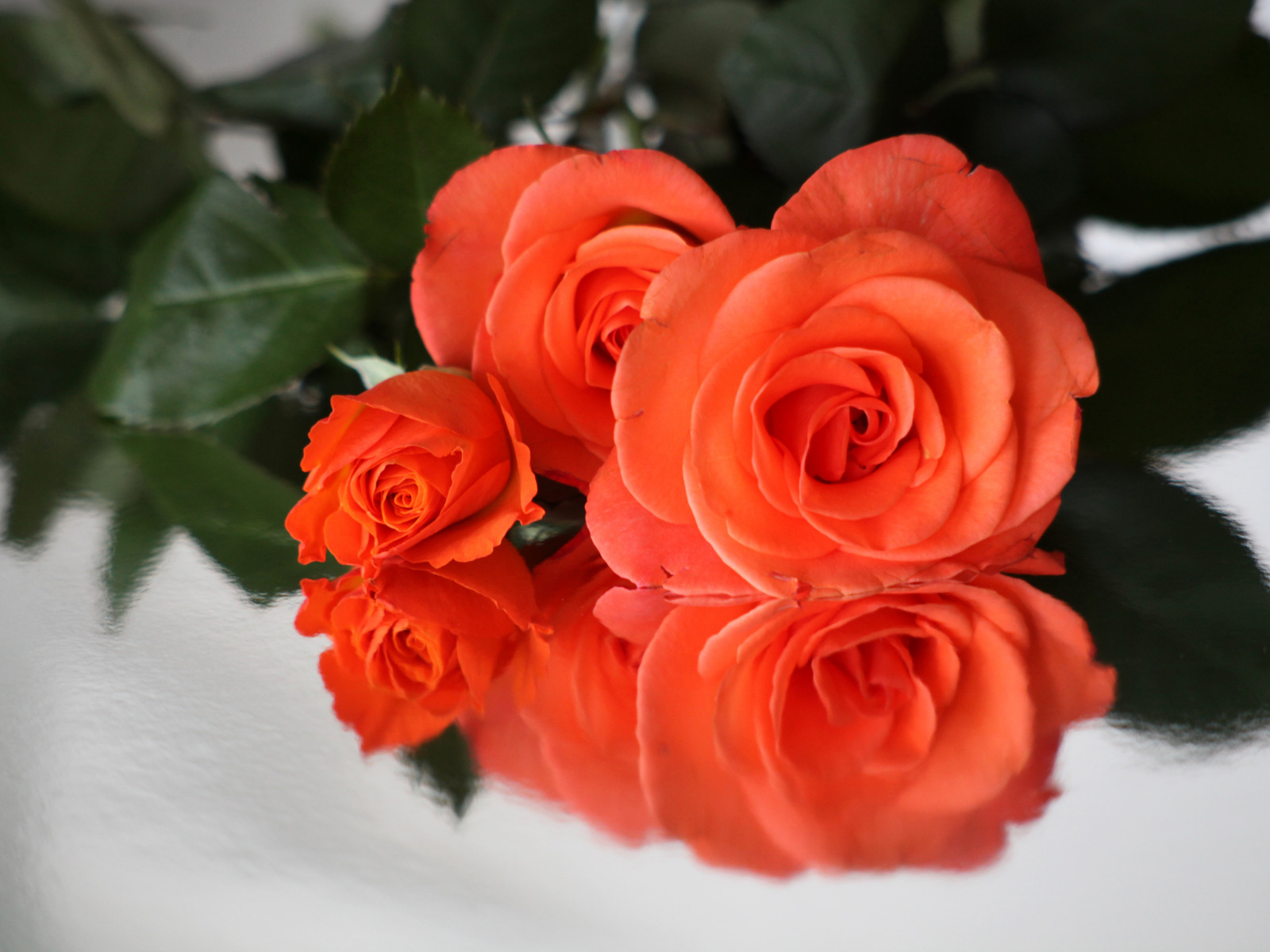 Открытка Букет роз для Тебя! - Цветы подруга Pinterest Floral 38