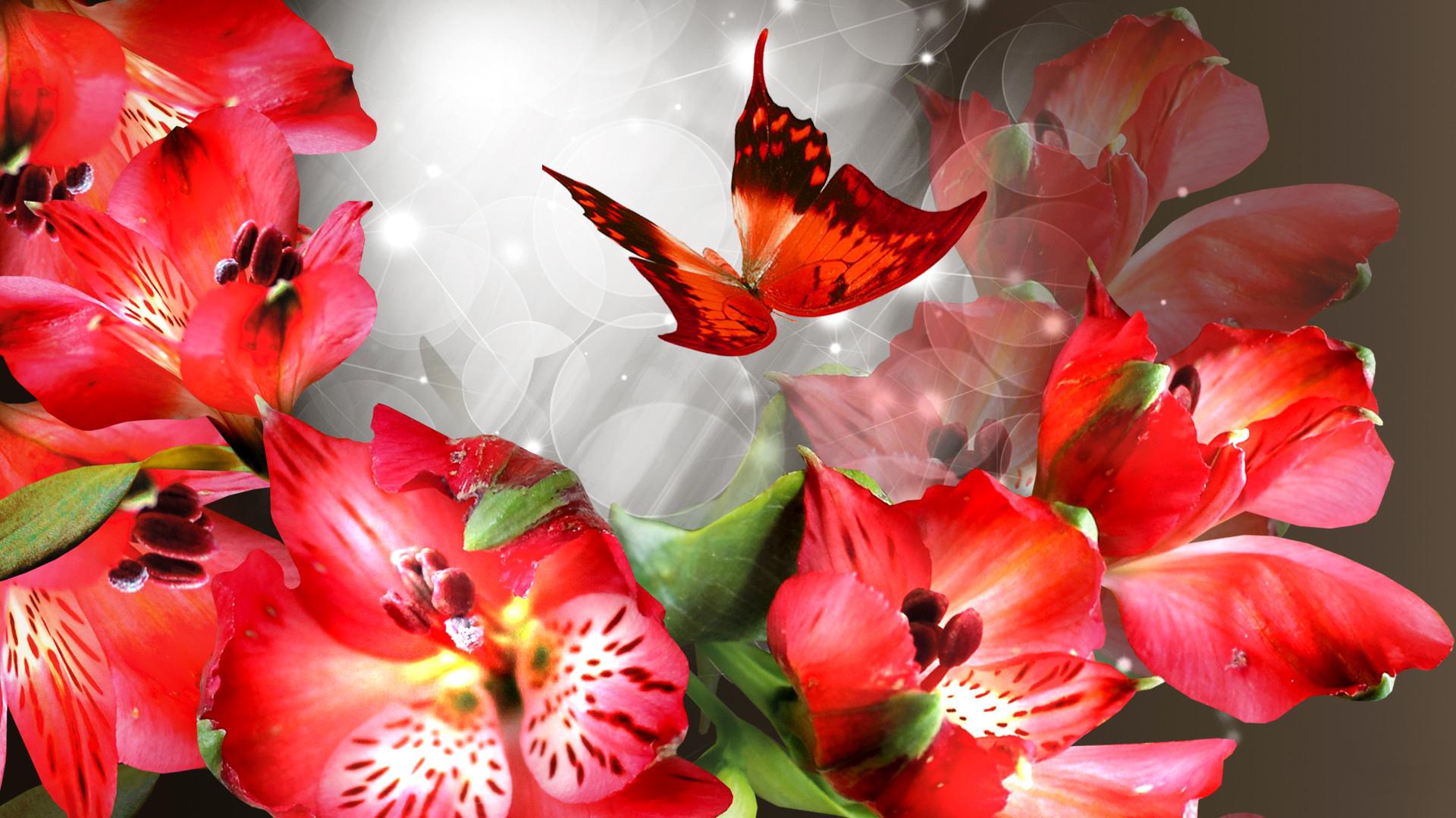 низу висячих фота калаж на рабочий сто цветы для
