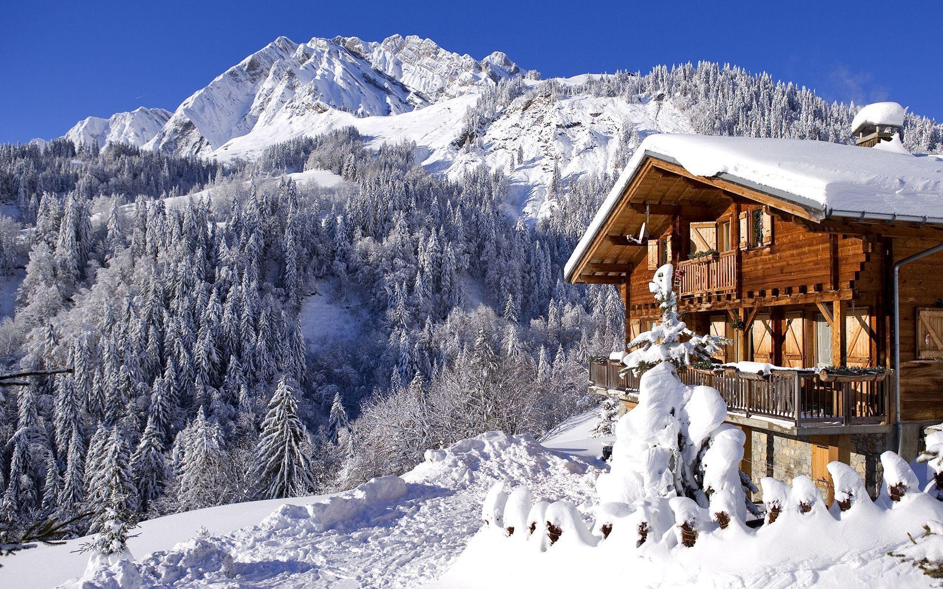 снег плантация snow plantation  № 443631 бесплатно