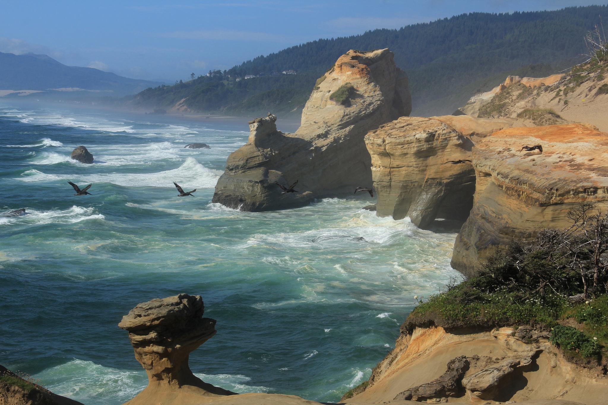 Море скалы волны шторм птицы обои