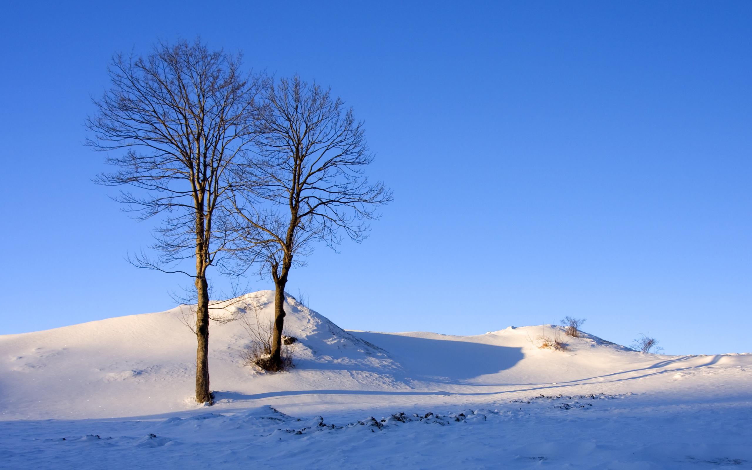 снег холмы snow hills  № 830916 без смс