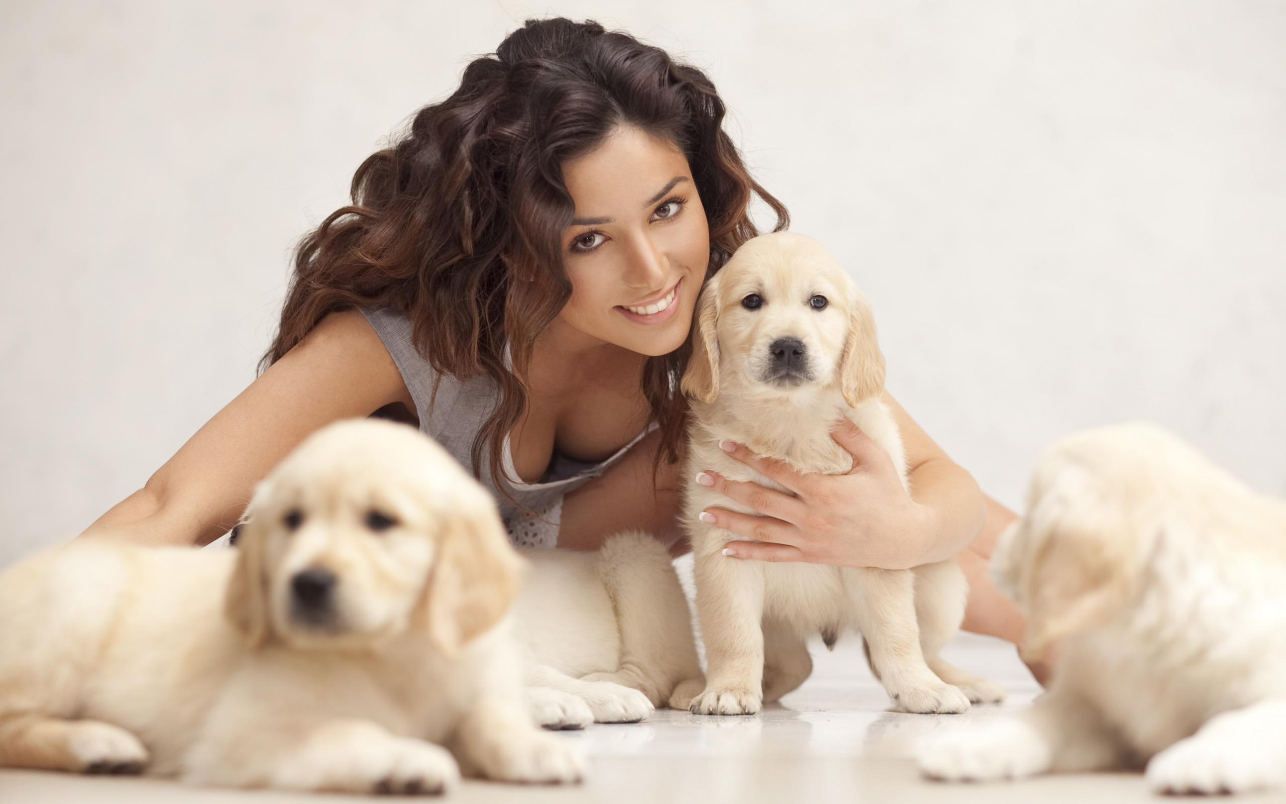 how to get rid of pet smell in carpet