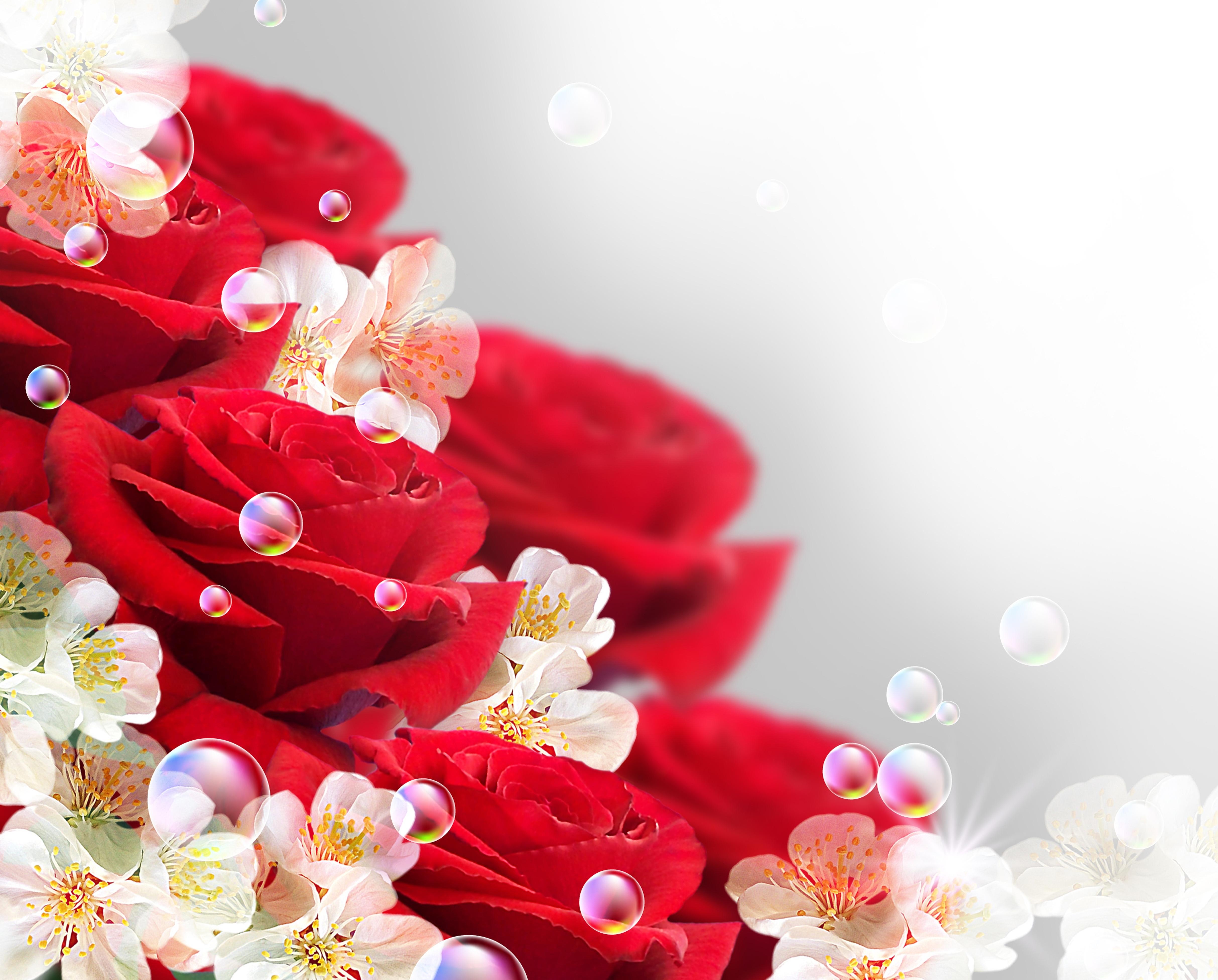 Картинки заставку, открытки с розами для сестры