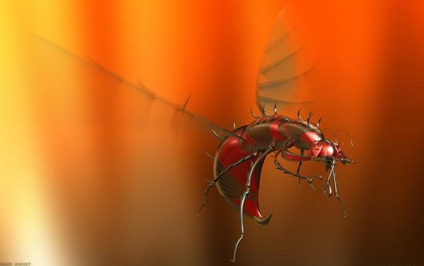 Фото обои жук, Sabre Hornet, алюминевый комар