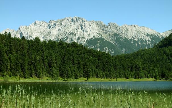Фото обои вода, деревья, горы, фото, пейзажи, леса