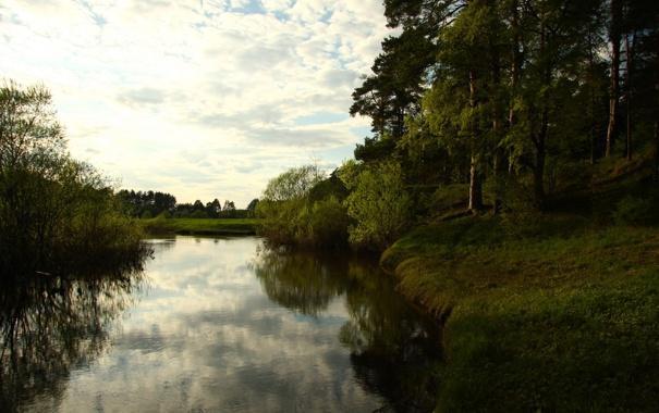 Фото обои лес, небо, пейзаж, река, настроение, берег, прогулка