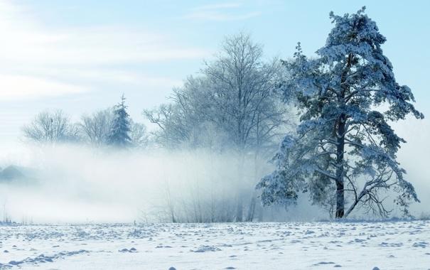 Фото обои зима, снег, пейзаж, природа, winter
