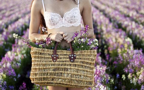 Фото обои лето, девушка, цветы, корзина