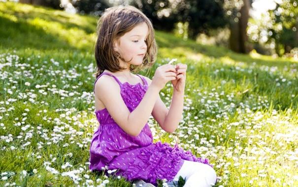 Фото обои поле, девочка, сидит, маргаритки