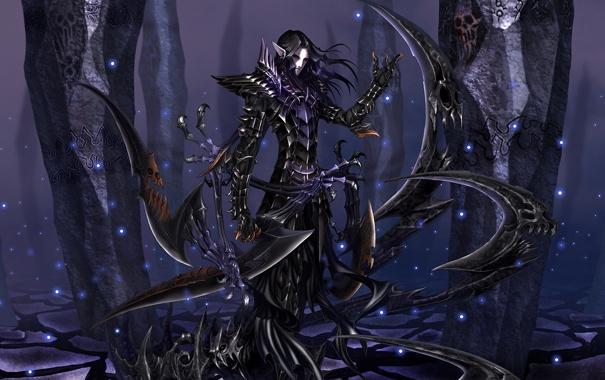Фото обои эльф, мечи, тёмный