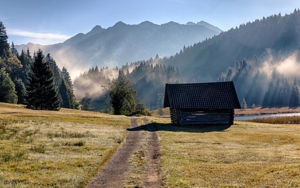 Фото обои дорога, трава, деревья, горы, туман, озеро, утро