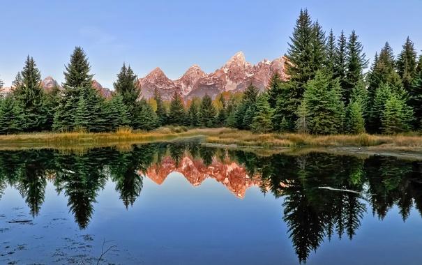 Фото обои лес, вода, деревья, горы, озеро, гладь, отражение