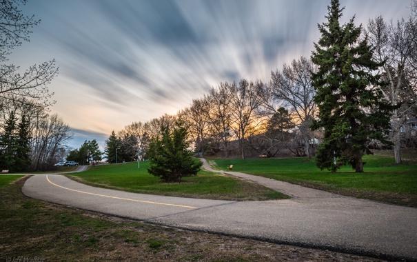 Фото обои дорога, деревья, Jeff Wallace
