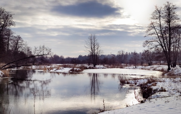 Фото обои зима, снег, река, дерево