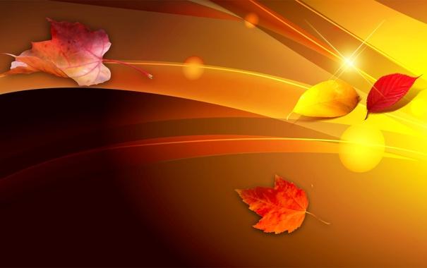 Фото обои осень, листья, линии, коллаж
