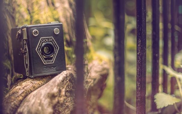 Фото обои природа, камни, фон, widescreen, обои, настроения, забор