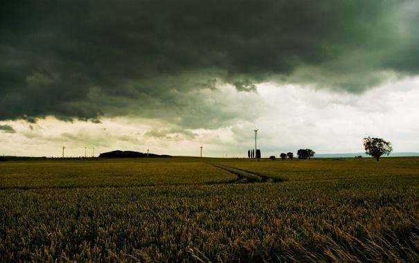 Фото обои дорога, поле, деревья, пейзаж, тучи, природа, ветер
