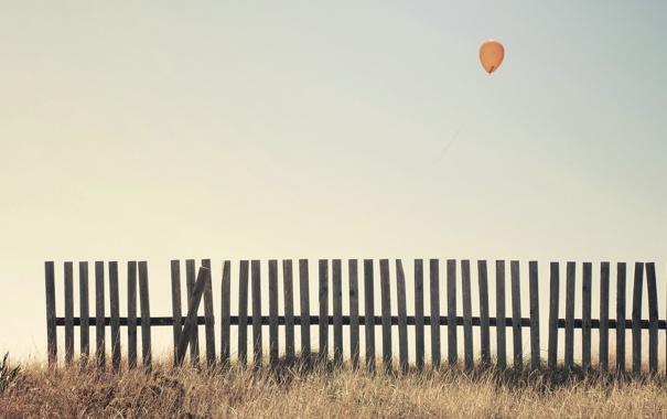 Фото обои небо, забор, шар