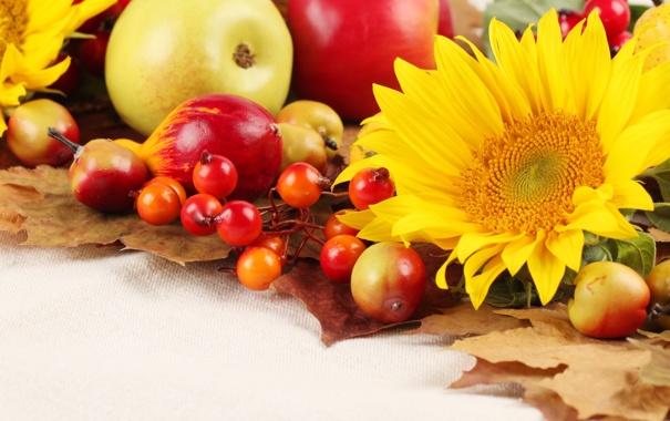 Фото обои осень, листья, подсолнухи, яблоки, фрукты