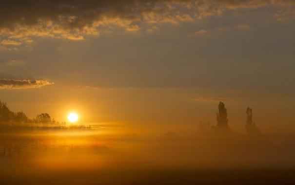 Фото обои пейзаж, природа, туман, Mystic Sunrise