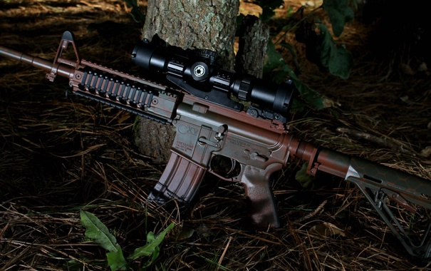 Фото обои природа, оружие, винтовка, карабин, штурмовая