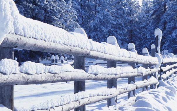 Фото обои зима, снег, ограда
