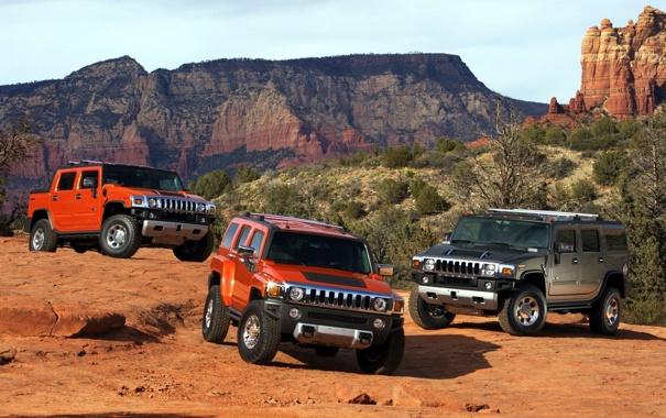 Фото обои Hummer, америка, H3 Alpha, каньён, H2 SUT, mixed, кусты