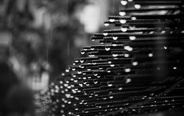 Фото обои капли, фото, дождь, черно-белое, металлическая, арматура