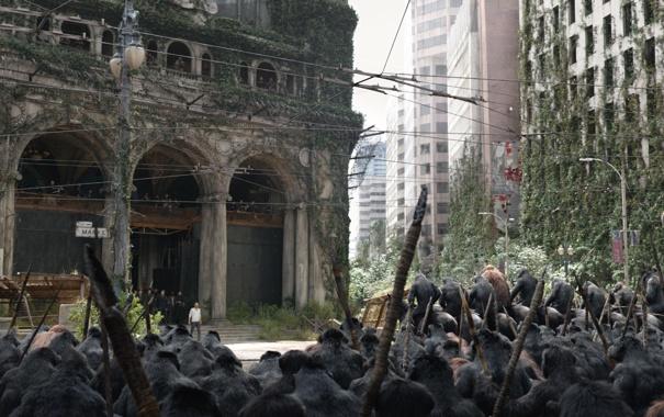 Фото обои лошадь, обезьяна, Планета обезьян: Революция, Dawn of the Planet of the Apes