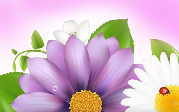 Фото обои цветок, коллаж, божья коровка, лепестки, насекомое, открытка