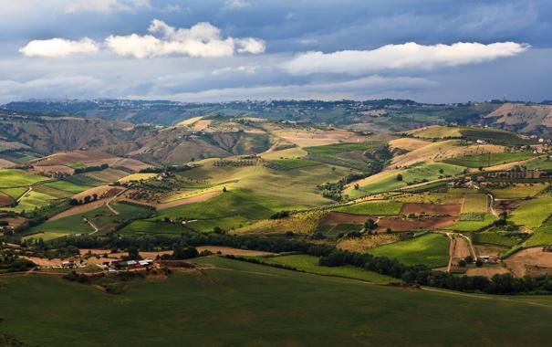 Фото обои зелень, небо, трава, облака, деревья, пейзаж, природа