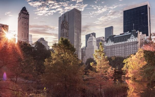 Фото обои осень, город, парк, небоскребы, USA, америка, сша