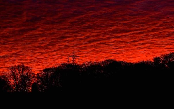 Фото обои небо, облака, деревья, закат, силуэт, панорама