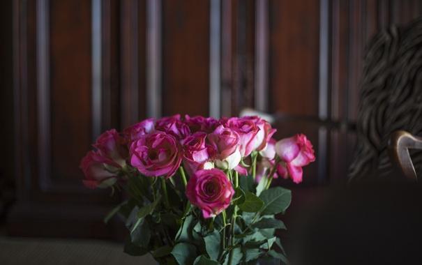 Фото обои розы, лепестки, розовые, цветы