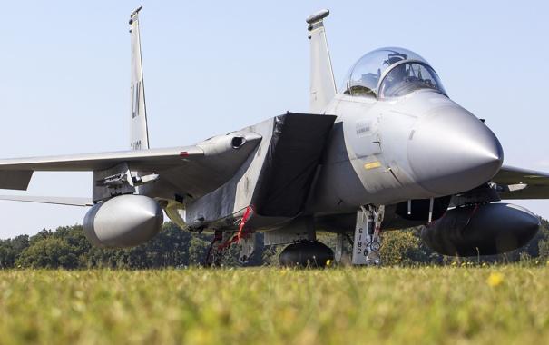 Фото обои истребитель, кабина, Eagle, «Игл», F-15D