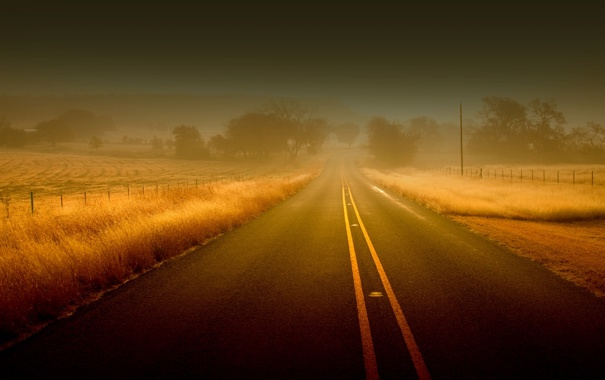 Фото обои трава, туманы, дымка, дерево, заборы, деревья, дорога