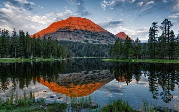 Фото обои лес, озеро, гора, Utah, Mirror Lake, Bald Mountain