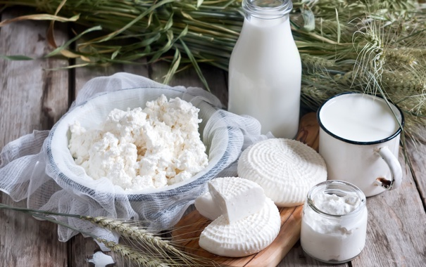 Фото обои сыр, молоко, творог, milk, cheese, молочные продукты, cottage cheese