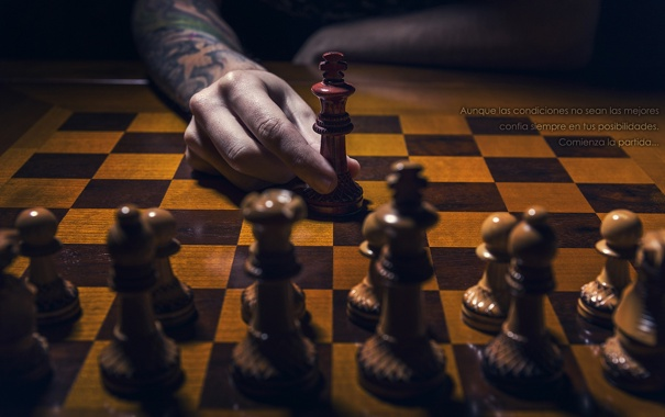 Фото обои фон, спорт, шахматы
