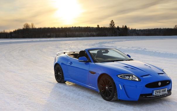 Фото обои зима, лес, солнце, снег, синий, Jaguar, ягуар
