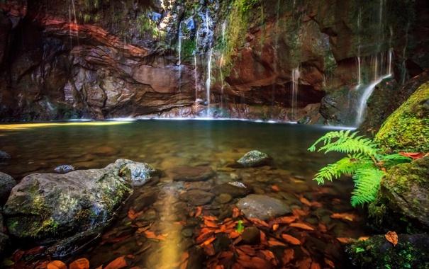 Фото обои лес, скала, река, ручей, водопад