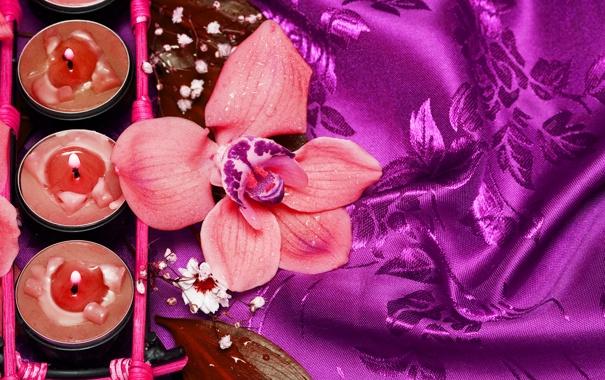 Фото обои цветок, романтика, свечи, flower, атлас, romance, candles
