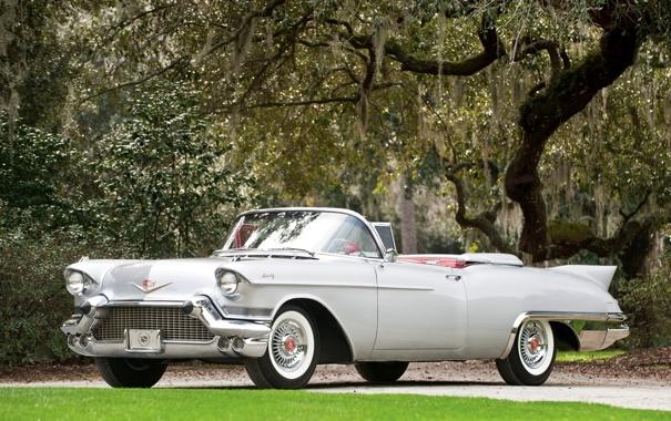 Фото обои серый, дерево, Eldorado, Cadillac, кабриолет, классика, передок