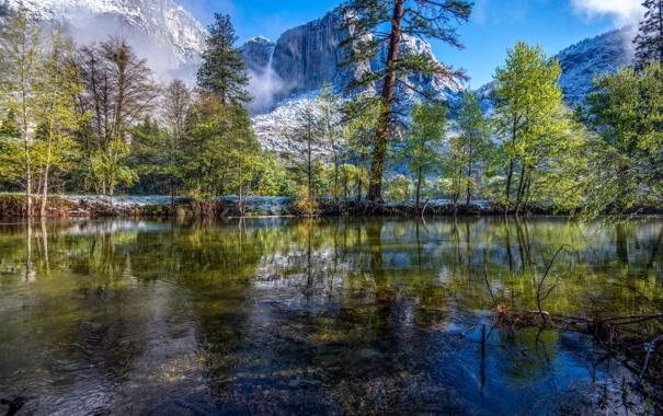 Фото обои снег, деревья, горы, отражение, река, Калифорния, USA