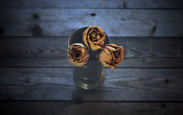 Фото обои фон, розы, цветы