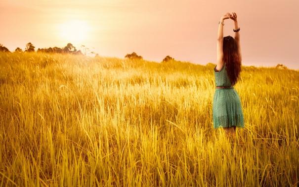 Фото обои поле, лето, девушка