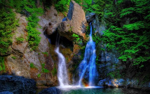 Фото обои лес, деревья, водопад, поток, камни, скала
