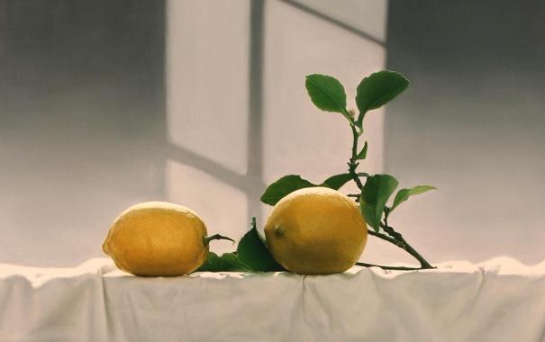 Фото обои свет, стол, тень, картина, окно, арт, фрукты