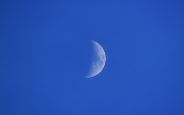 Фото обои Небо, Луна, Синее