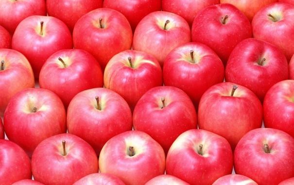 Фото обои много, яблок, спелых
